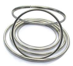 Stainless steel shaft seals springs